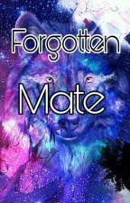 The Forgotten Mate by SweetKakoinii