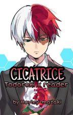 Cicatrice || Todoroki Shouto x reader (IN PAUSA) by Hayley-mazaki