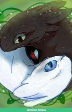 Dragon!Reader x Toothless by TheAlaskanWolfie