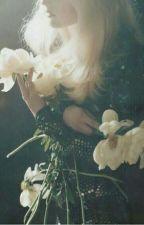My Precious Rose  by smeraldo_rana