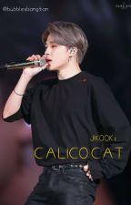 Calico cat ☆P.JM-J.JK☆ [COMPLETED] by Bubblesbangtan