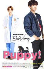 PUPPY! [Chanbaek] by EliahVianney