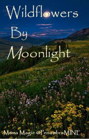 Wildflowers By Moonlight by PenumbraMine