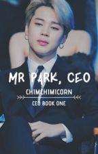 Mr Park, CEO || Series 1 || PJM by chimchimicorn