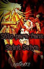 Sólo para fans: Saint Seiya  by catex12