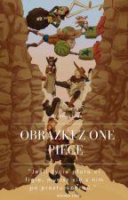 Obrazki z One piece'a by Lawko-sama
