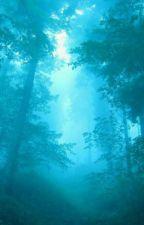 A walk in the woods (Creepypasta X Reader) by neko_meow_8
