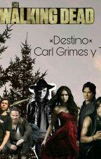 Destino  ( Carl grimes y tu) by dany_McCall_grimes