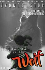 Rejected By The Wolf 》Sterek 《 by Blueberry_of_hell