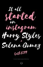 It all Started on Instagram || H.S x S.G (DISCONTINUED) by beth5299
