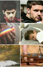 Law&Love (AU!Ziam). by Roselle_Rose