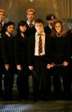 Harry Potter Hakkında Bilmediğiniz Herşey  by FabricioFabri