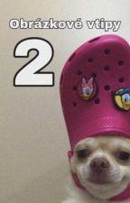 Obrázkové vtipy 2 by KajaNet