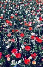Perfect Match by BookDragonKOTLC
