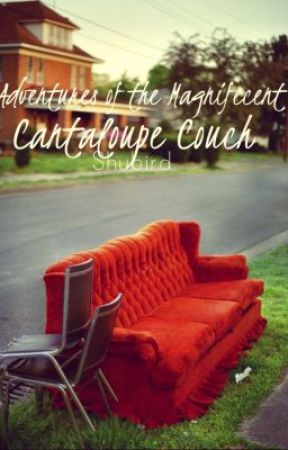 Adventures of the Magnificent Cantaloupe Couch: A Collection of Short Stories by Shubird