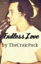 Endless Love *A Harry Styles Fanfic* by thecraicpack