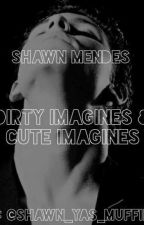Some dirty and cute imagines for the Mendes Army by shawn_yas_muffins