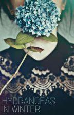 Hydrangeas In Winter by HayleyMonroe