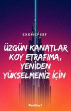 Üzgün Kanatlar Koy Etrafıma, Yeniden Yükselmemiz İçin by exoficfest