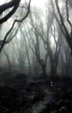 la niña en el bosque by ccasallascamacho