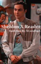 Sheldon X Reader by XxRainbowxSeigexX