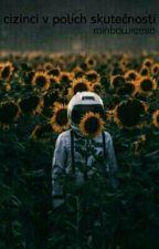 Cizinci v polích skutečnosti by InsomniacRain