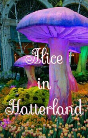 Alice in Hatterland by titirain