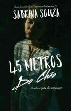 45 Metros Do Chão (Conto) by SabrinaSouza211850