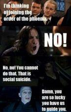 Harry Potter Funny Bilder by Mini-Luna