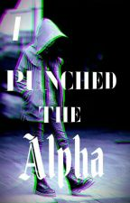 I Punched The Alpha by wolf158