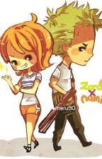 one shot zona (zoro x nami) by tacovichan