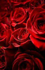 A Rose (ryguyrocky x reader) by ShadowNinjaCat11