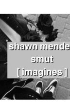 Shawn Mendes Smut [ i m a g i n e s ] by benitosrose
