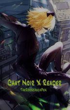 Chat Noir x Reader by TheRorschachPen