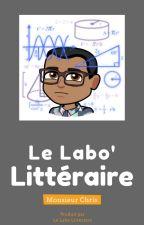 Le Labo' Littéraire  [Conseils édition] by LaboLitteraire