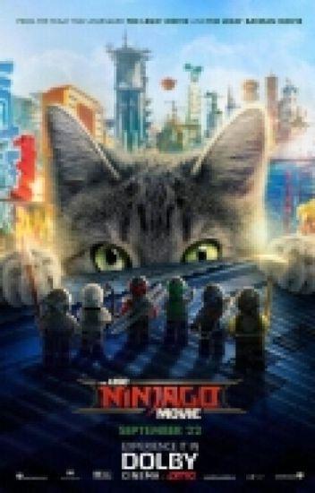 Ask The Lego Movie Ninjas