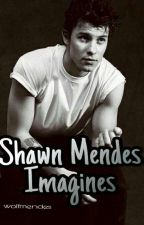 Shawn Mendes Imagines by wolfmendes