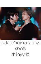 SeKai/Kaihun One-Shots by myouismina