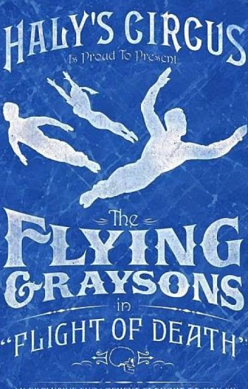 My Flying Grayson ( Grayson x Reader) (Editing )