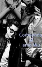 Cortejando al amo Wu (adaptación) by ghoticmoon