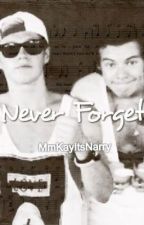 Never Forget *Narry* by MmKayItsNarry