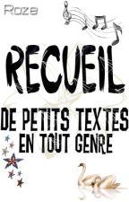 Recueil de petits textes by -Roze-