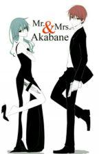 The Female Assassin (Karma X Reader) by Shoko--Instano