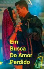 Em Busca Do Amor Perdido by CacauCarolBb