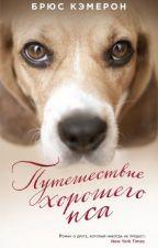 Путешествие хорошего пса by Dia_Sea
