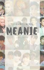 Too Good To Be Real : Meanie by sweetypaw