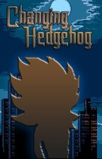 Changing Hedgehog: The Elemental Hero by NeoTheTorch