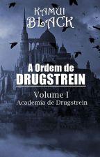 A Ordem de Drugstrein - Volume I by KamuiBlack