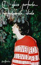 •El chico perfecto ...perfectamente idiota;; fillie  by wolfhardo12