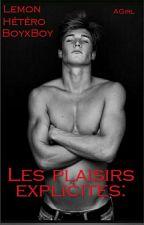 Les plaisirs explicites: by ErotickGirl
